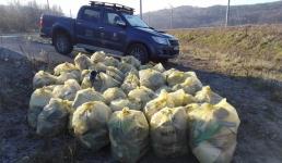 Kolejna akcja sprzątania brzegów Jeziora Mucharskiego. Weźmiecie udział?